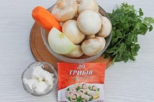 Ингредиенты для грибного супа-пюре